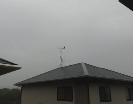 鳩春雨と 001