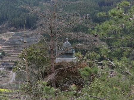 黒木の桜 281