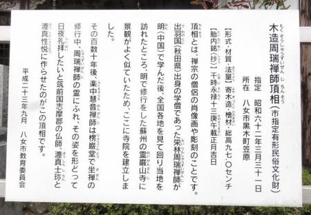 黒木の桜 324