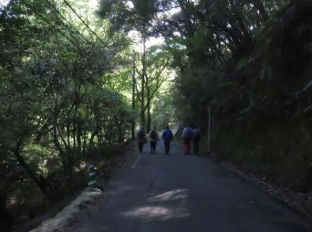 清水山とイトトンボ 066