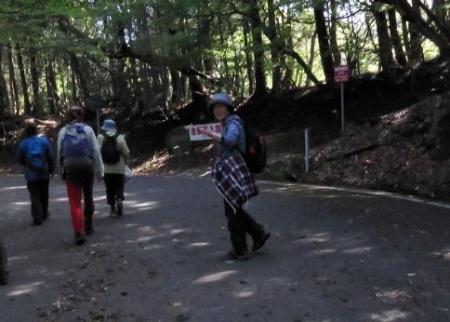 清水山とイトトンボ 088