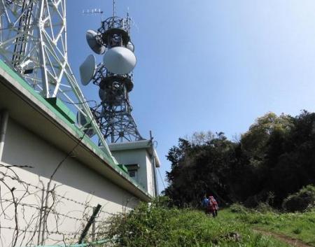 清水山とイトトンボ 105