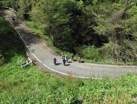 清水山とイトトンボ 158