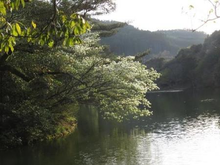 カラ迫岳と麻生池 387