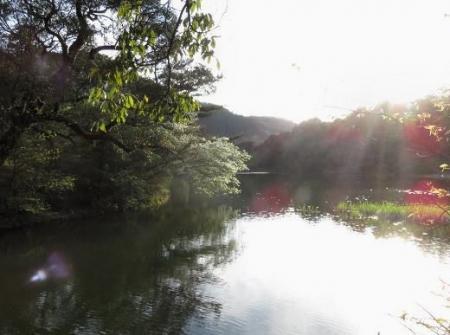 カラ迫岳と麻生池 389