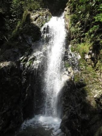 カラ迫岳と麻生池 097