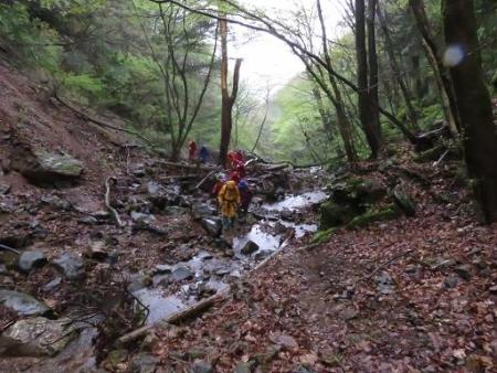 カラ迫岳山開き 白いリンドウ 096