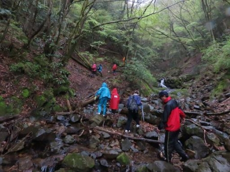 カラ迫岳山開き 白いリンドウ 094