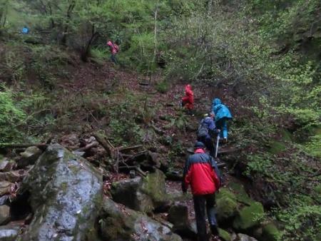 カラ迫岳山開き 白いリンドウ 092