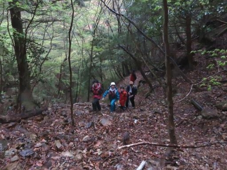 カラ迫岳山開き 白いリンドウ 110