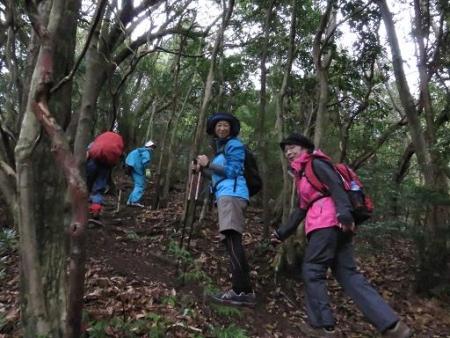 カラ迫岳山開き 白いリンドウ 124