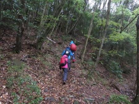 カラ迫岳山開き 白いリンドウ 119