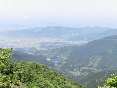 井原山ツツジ 240