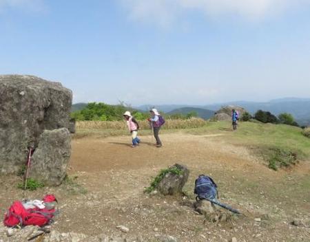 井原山ツツジ 268