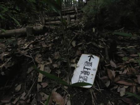 金立山に登る 058