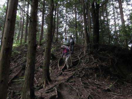 金立山に登る 077