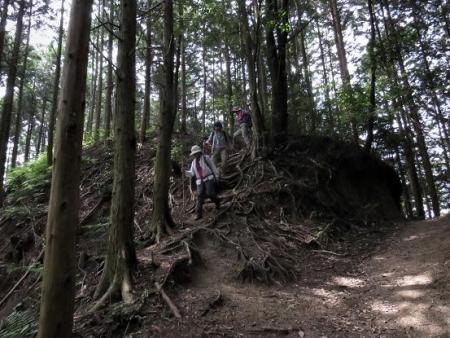 金立山に登る 074