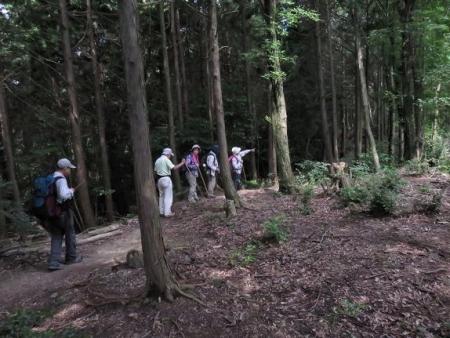 金立山に登る 072