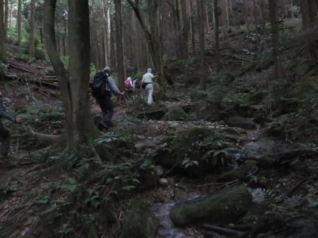 金立山に登る 086