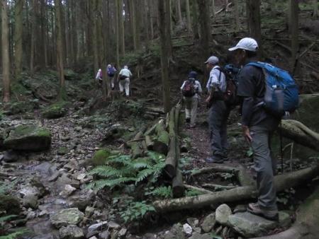 金立山に登る 089