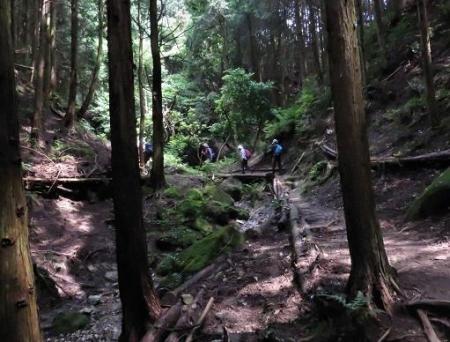 金立山に登る 119