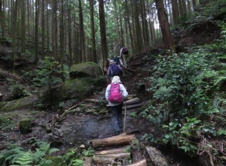 金立山に登る 112