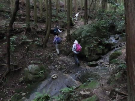 金立山に登る 103