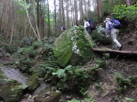 金立山に登る 102