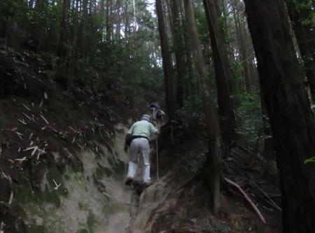 金立山に登る 142