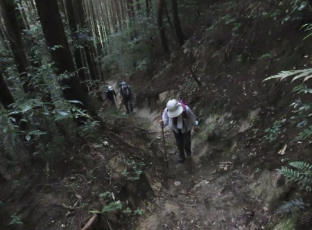 金立山に登る 143