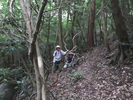 金立山に登る 191