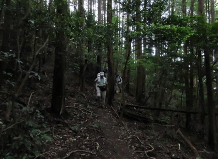 金立山に登る 186
