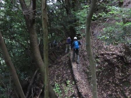 金立山に登る 205