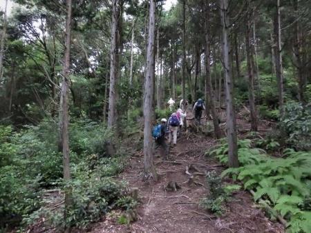 金立山に登る 200