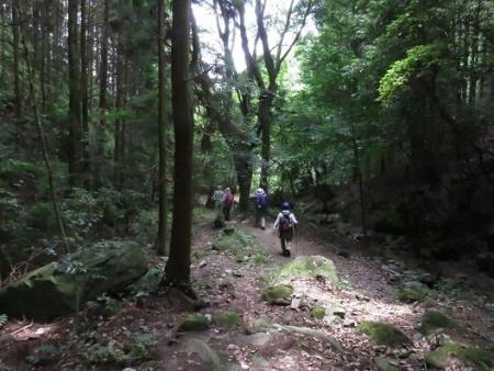 金立山に登る 229
