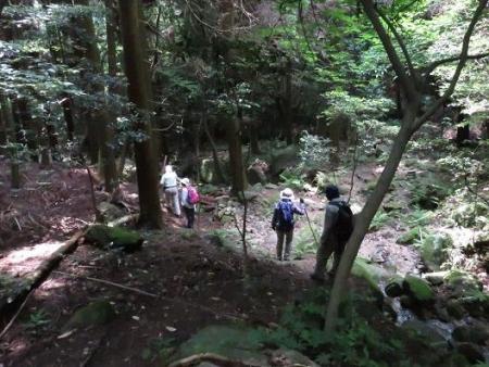 金立山に登る 228