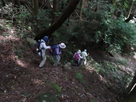 金立山に登る 225