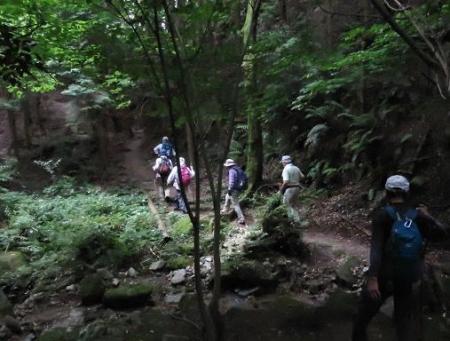 金立山に登る 212