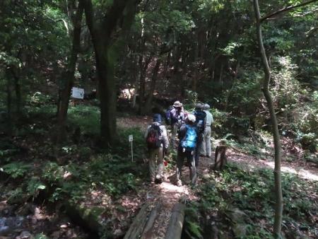 金立山に登る 236