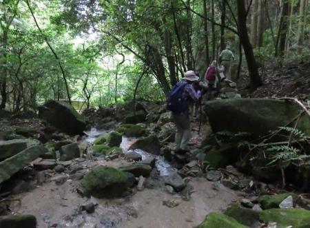 金立山に登る 231