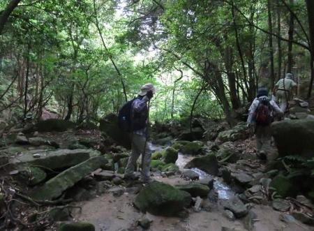 金立山に登る 230
