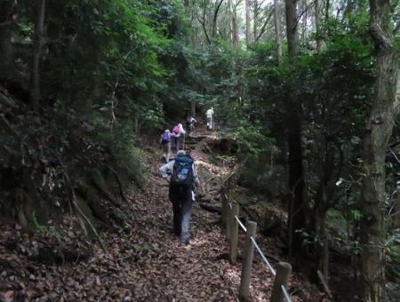 金立山に登る 242