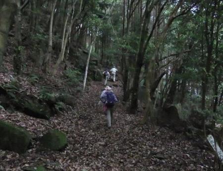 金立山に登る 240