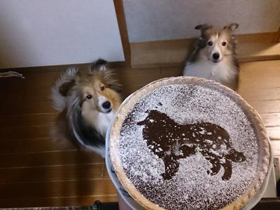 3 19 ケーキ