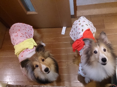 3歳浴衣姉妹