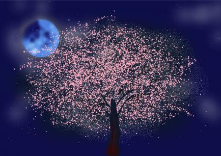 夜桜+のコピー_convert_20150405171948