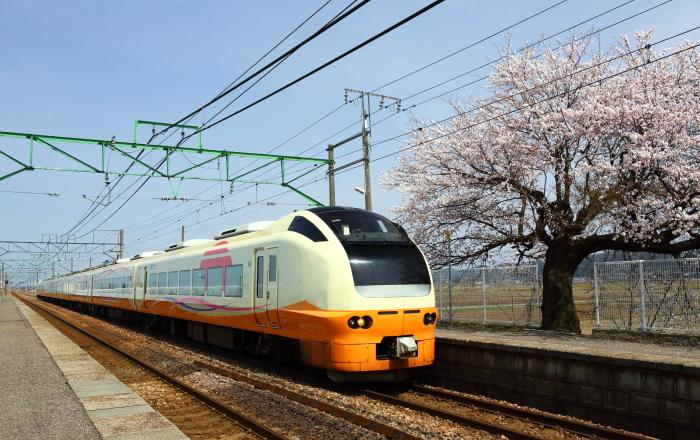 JX3A0186b (2)