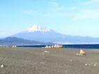 三保と富士山