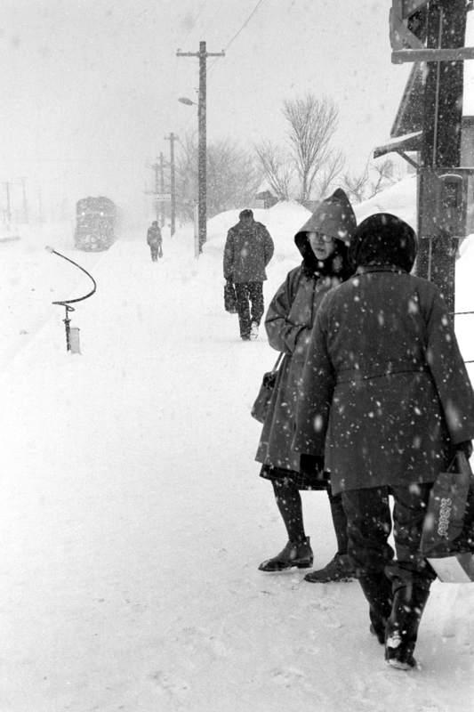 函館本線 蘭島1 1984年2月 16bitAdobeRGB原版 take1b