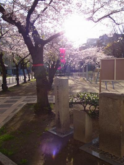 150402sakura.jpg